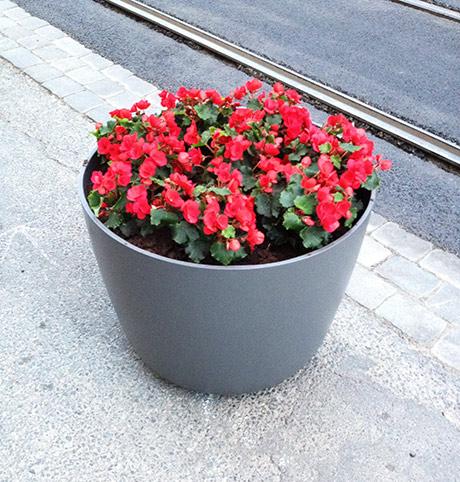 Blomsterpotte med rødt.
